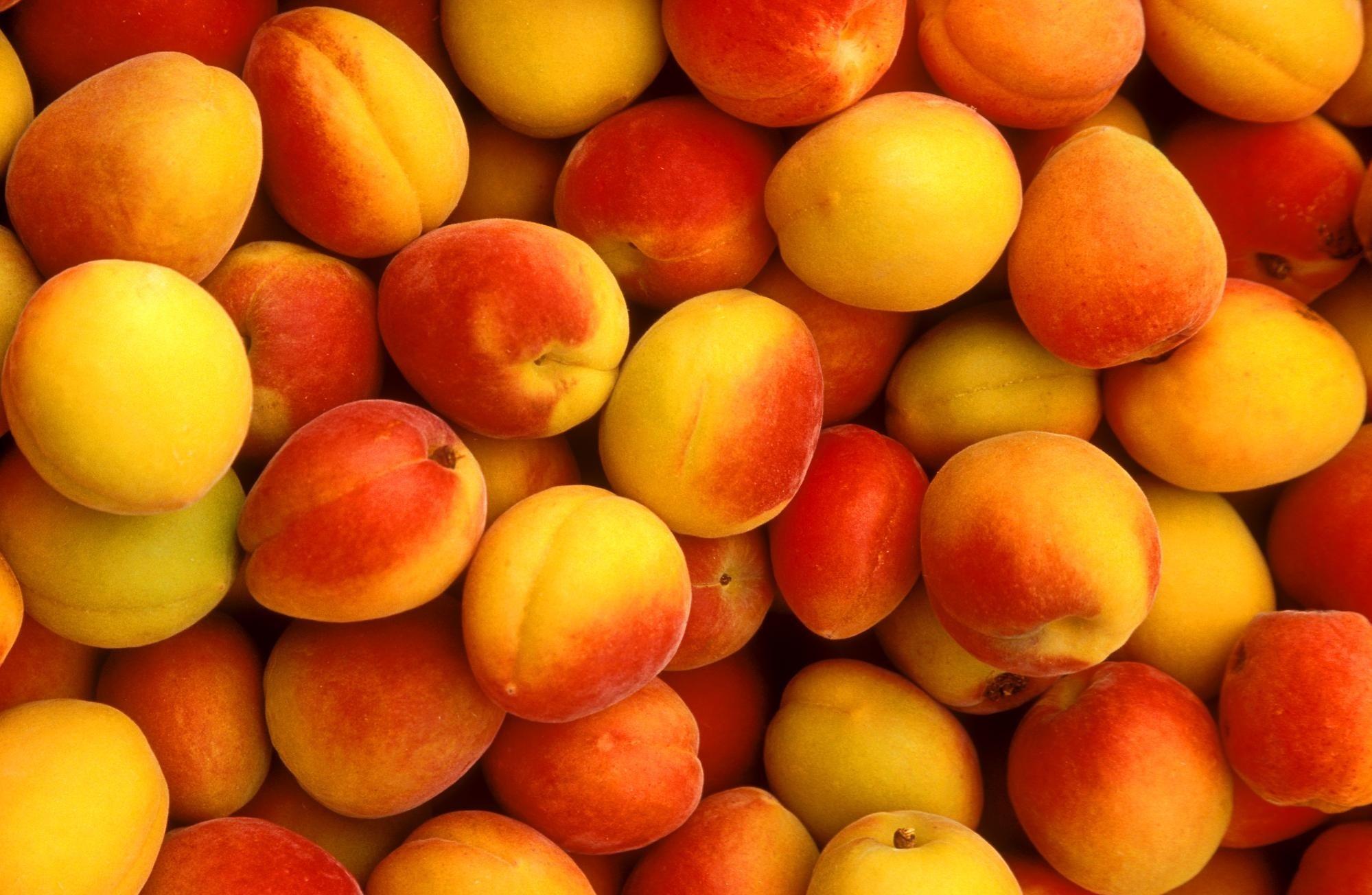 Полезные свойства сушеного абрикоса