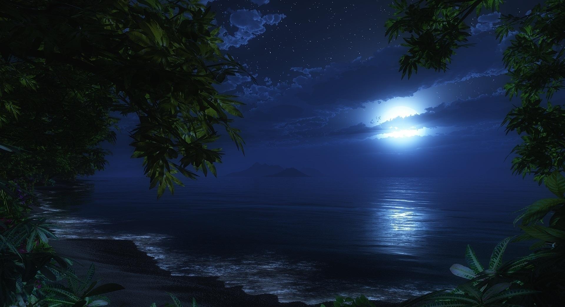 Sea night wallpaper