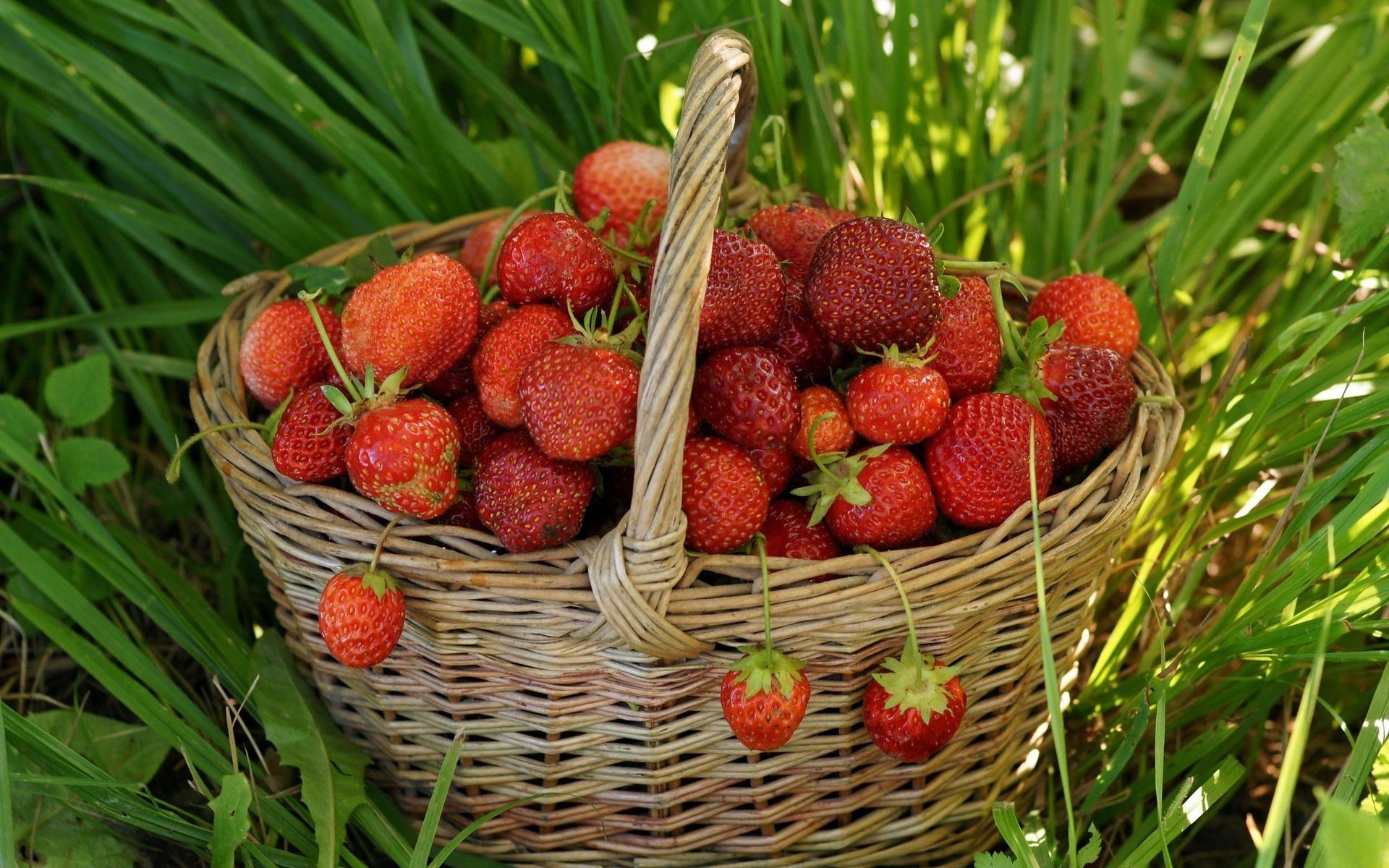 Обои для рабочего стола ягоды