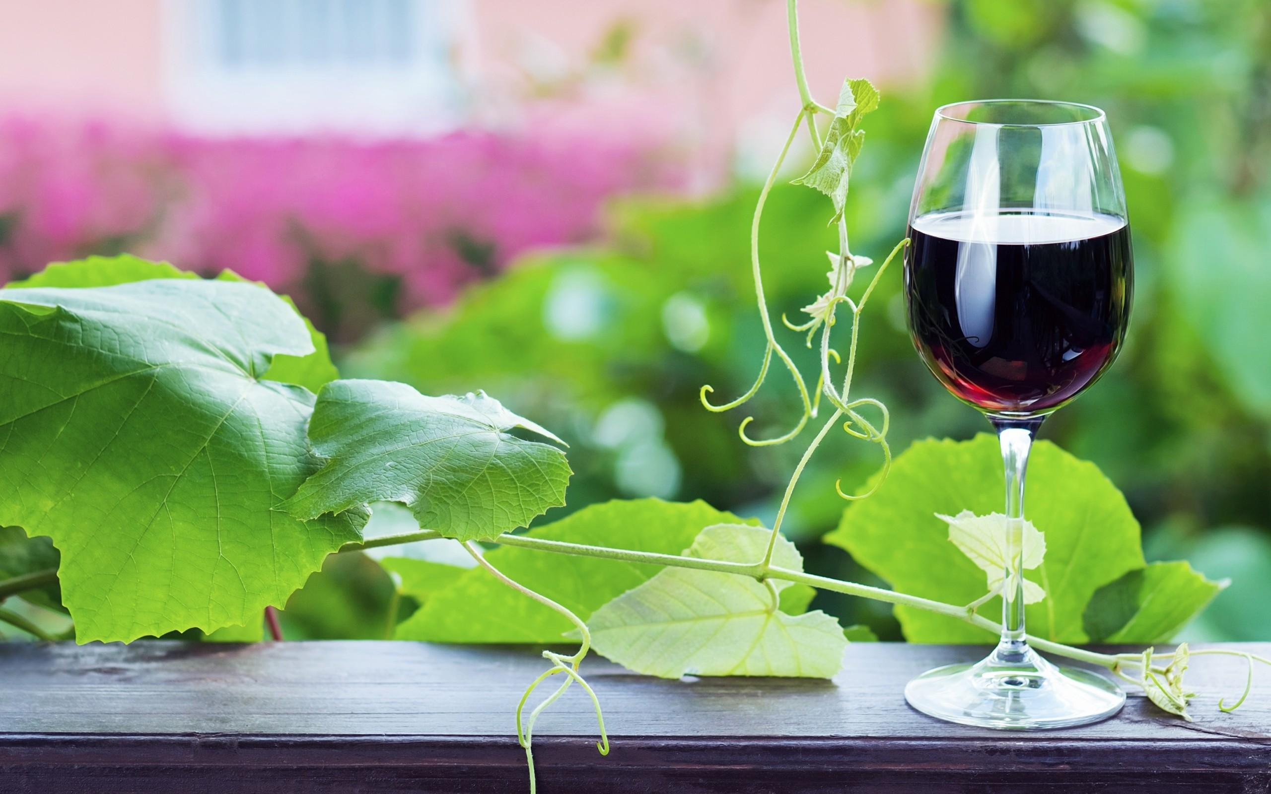 Вино - Wine 2 (65 обоев) » Смотри Красивые ...: lookw.ru/eda/169-vino-wine-2-65-oboev.html