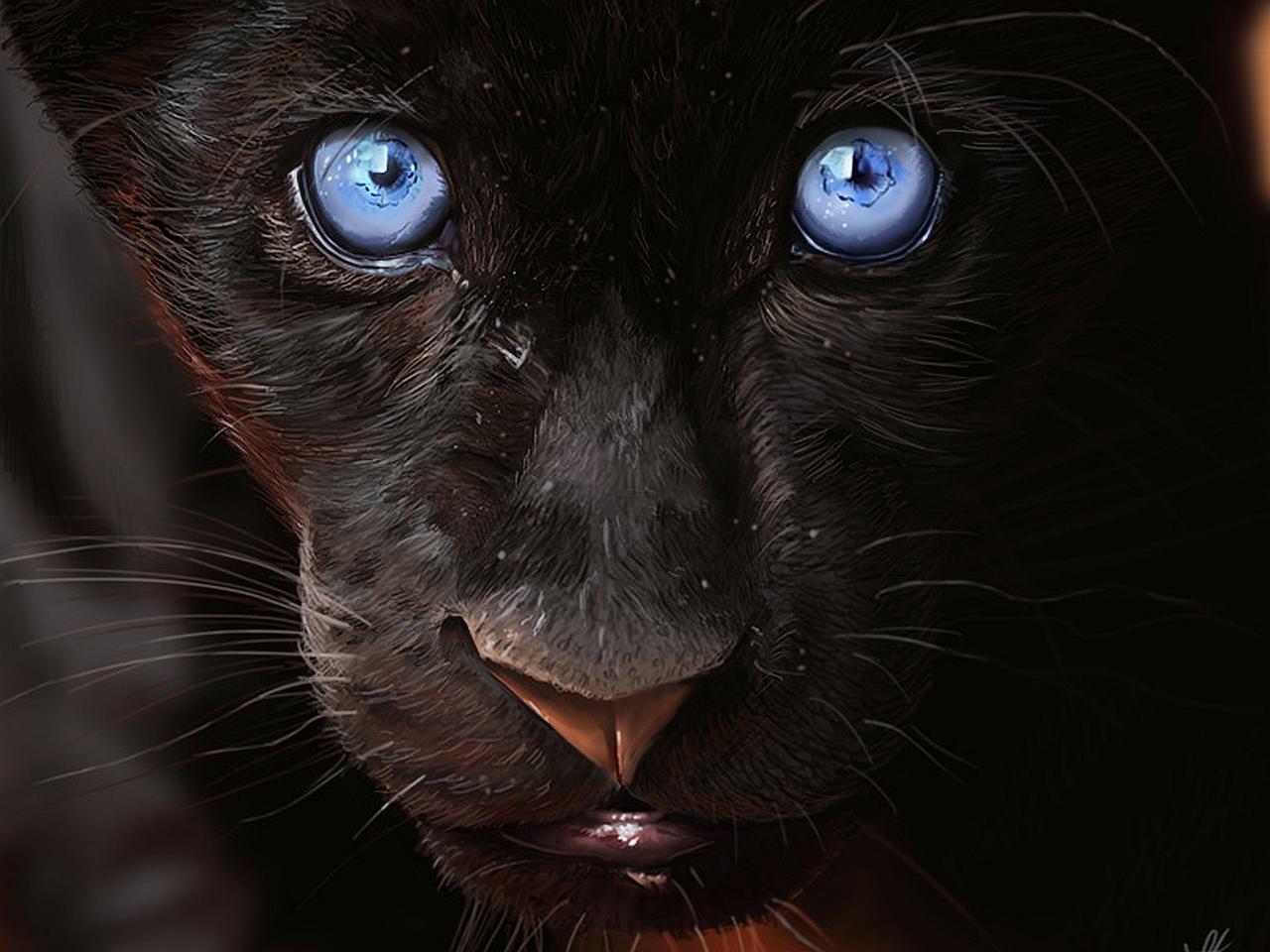 годы картинка глаза пантеры с голубыми глазами думаю вас