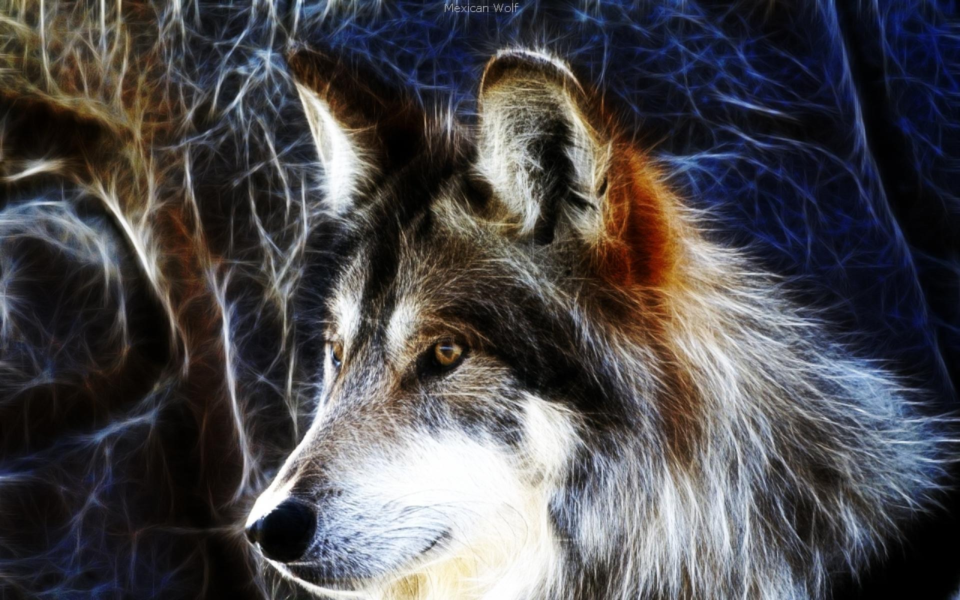 Нарисованные волки своими руками фото 446