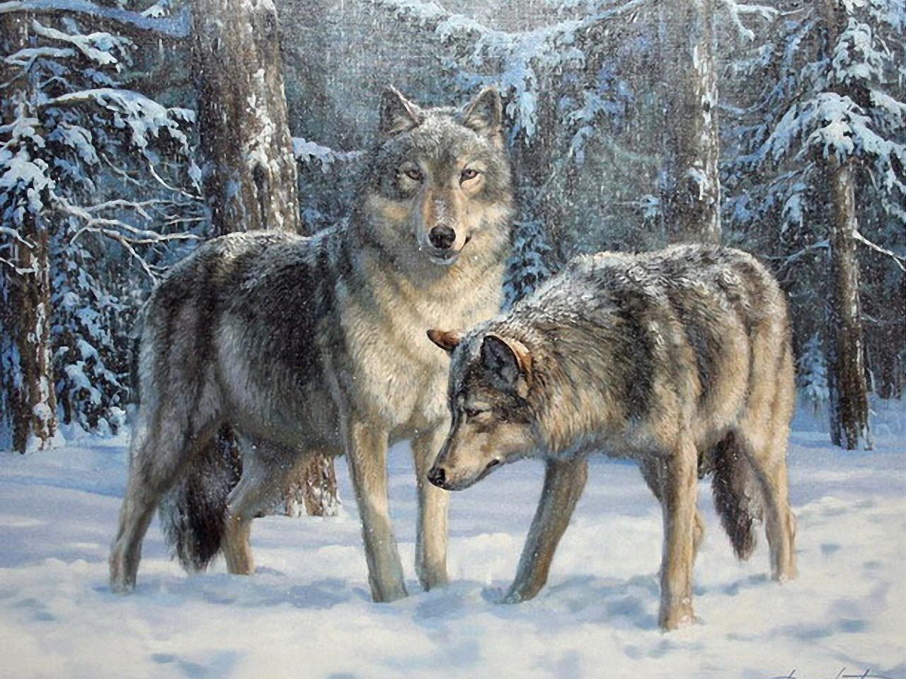 Нарисованные волки своими руками фото 937