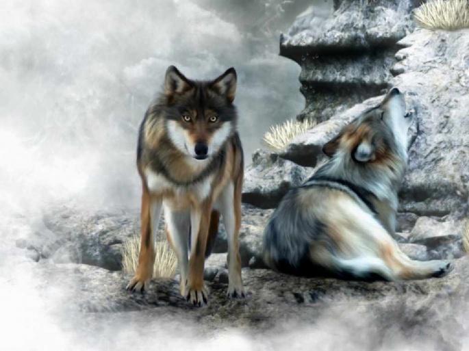 Волки рисованные (55 обоев)