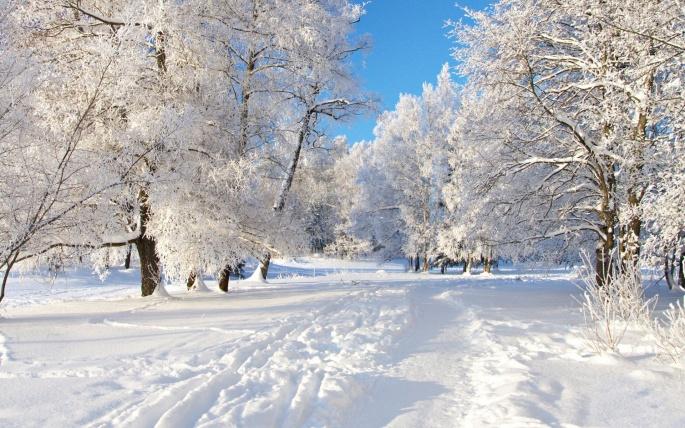Зимние обои (133 обоев)