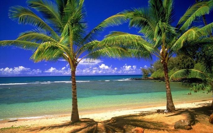 Красивые пляжи мира (160 обоев)