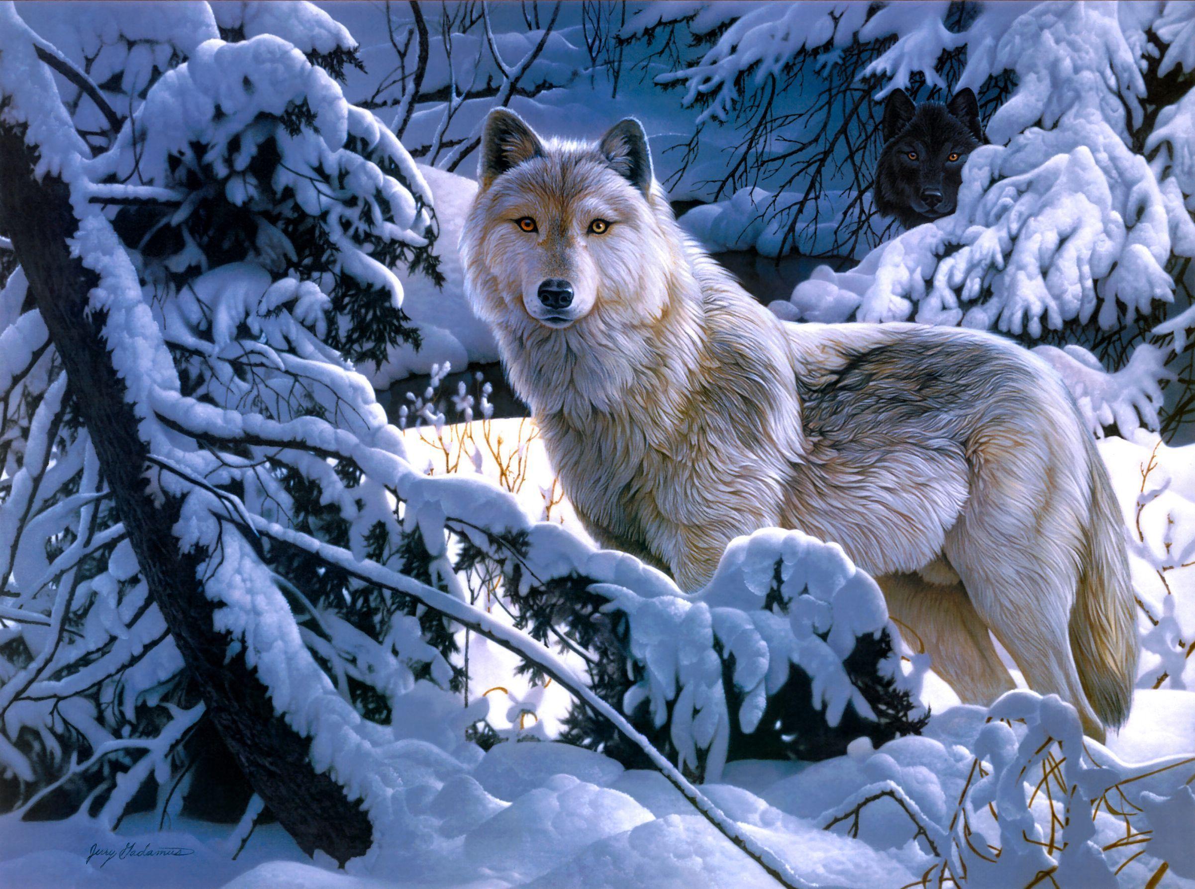 Волки зимой картинки нарисованные
