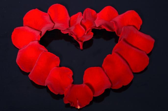 Романтический креатив из роз (32 обоев)