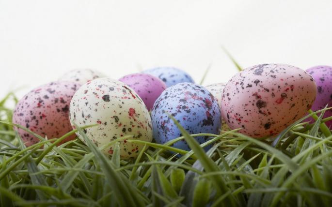 Яйца (328 обоев)