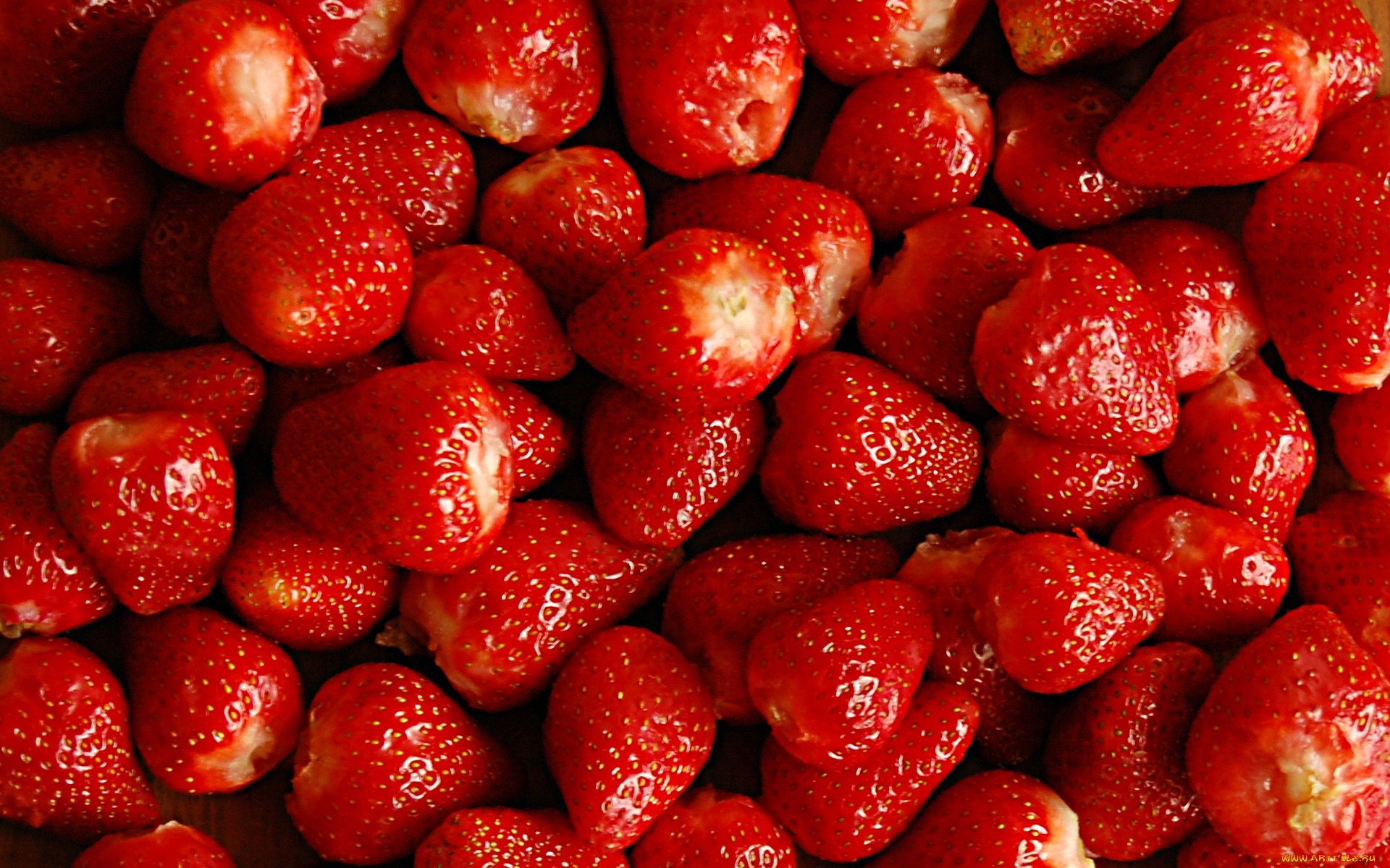 Shy Strawberry  watermelontourmalinegemtumblrcom