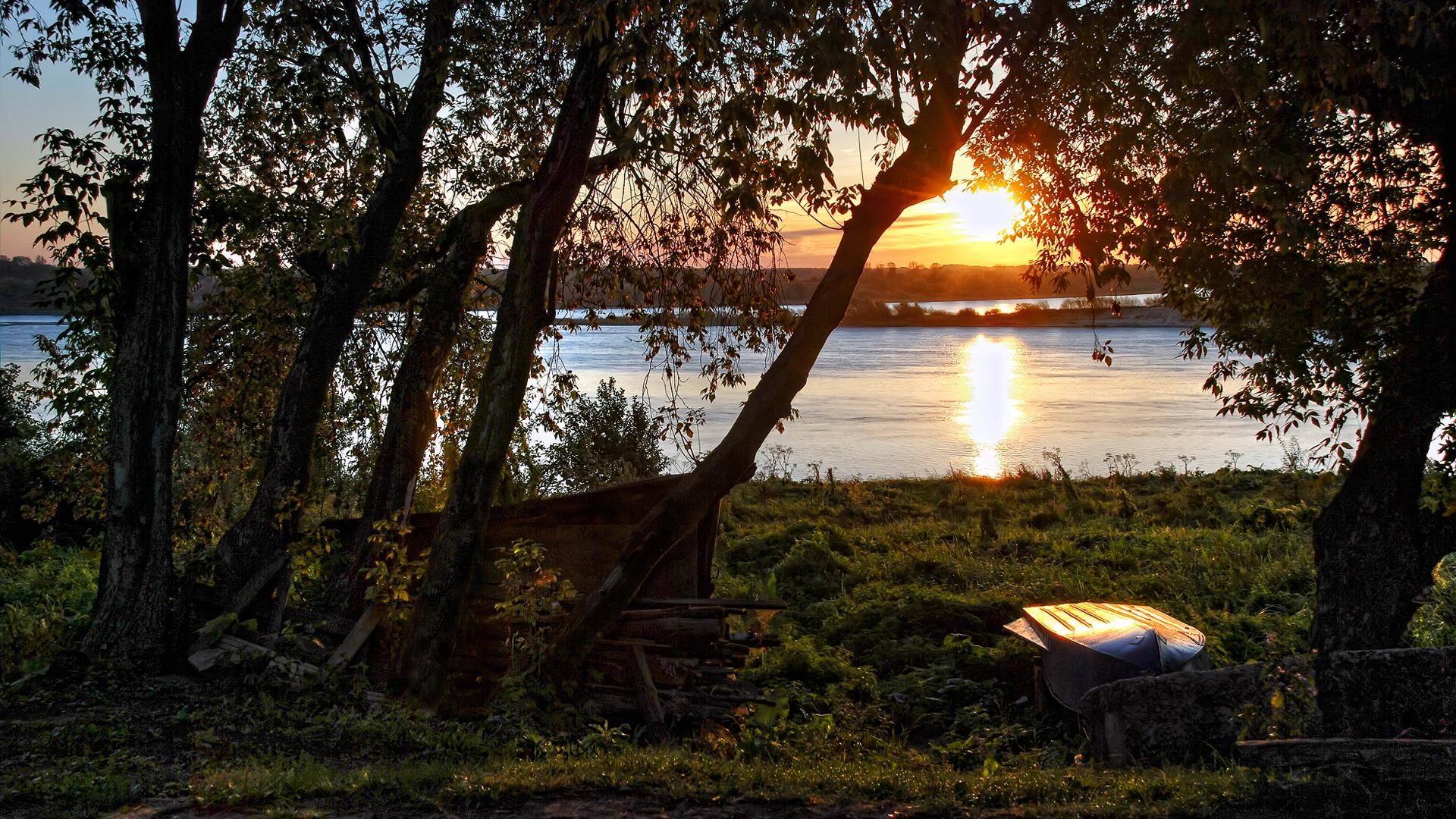 Обои восход, ёлки, утро. Природа foto 14