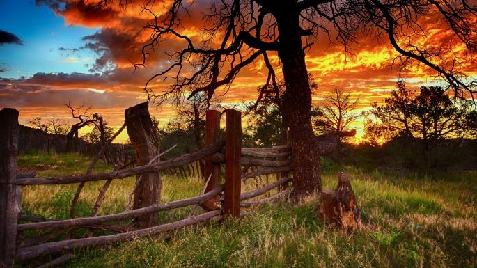 Природа. Луч солнца золотого (100 обоев)