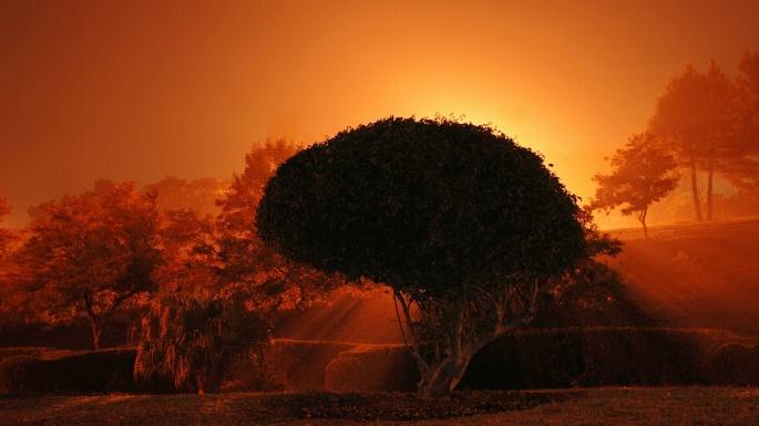 Природа. Вечерний багрянец (40 обоев)