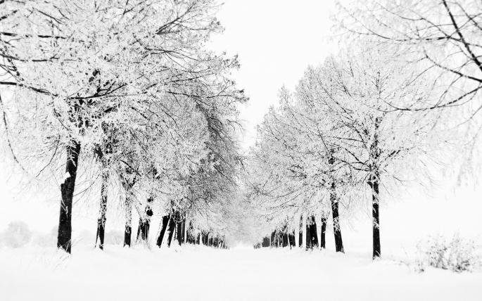 Зима 2 (116 обоев)