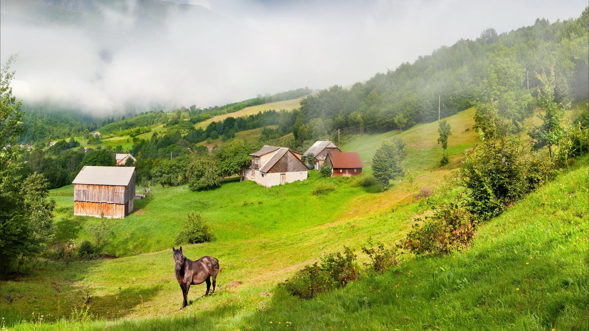 Картинка На Рабочий Стол Деревня Летом