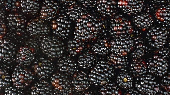 Лесные ягоды (70 обоев)
