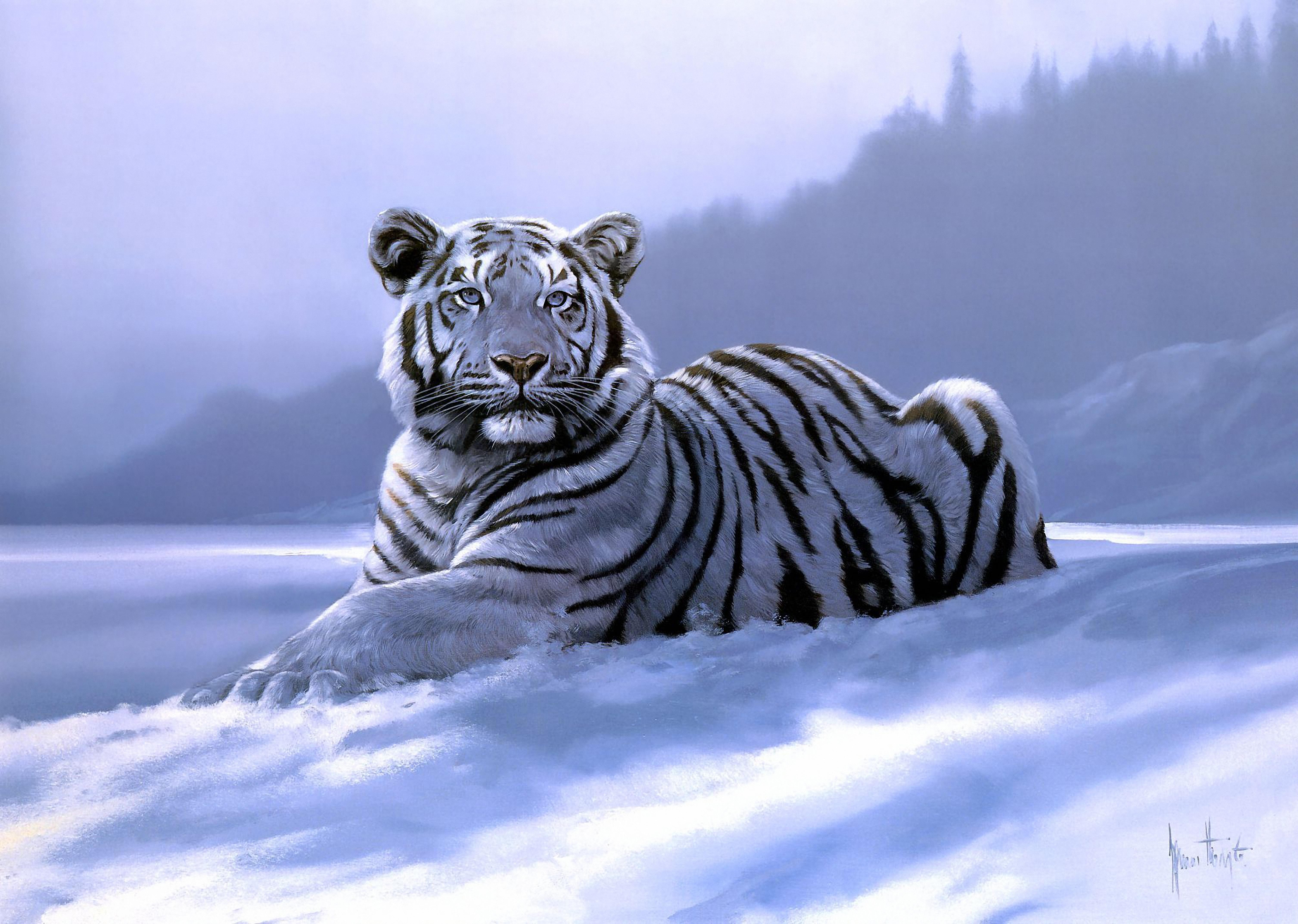 Фоновая картинка тигр