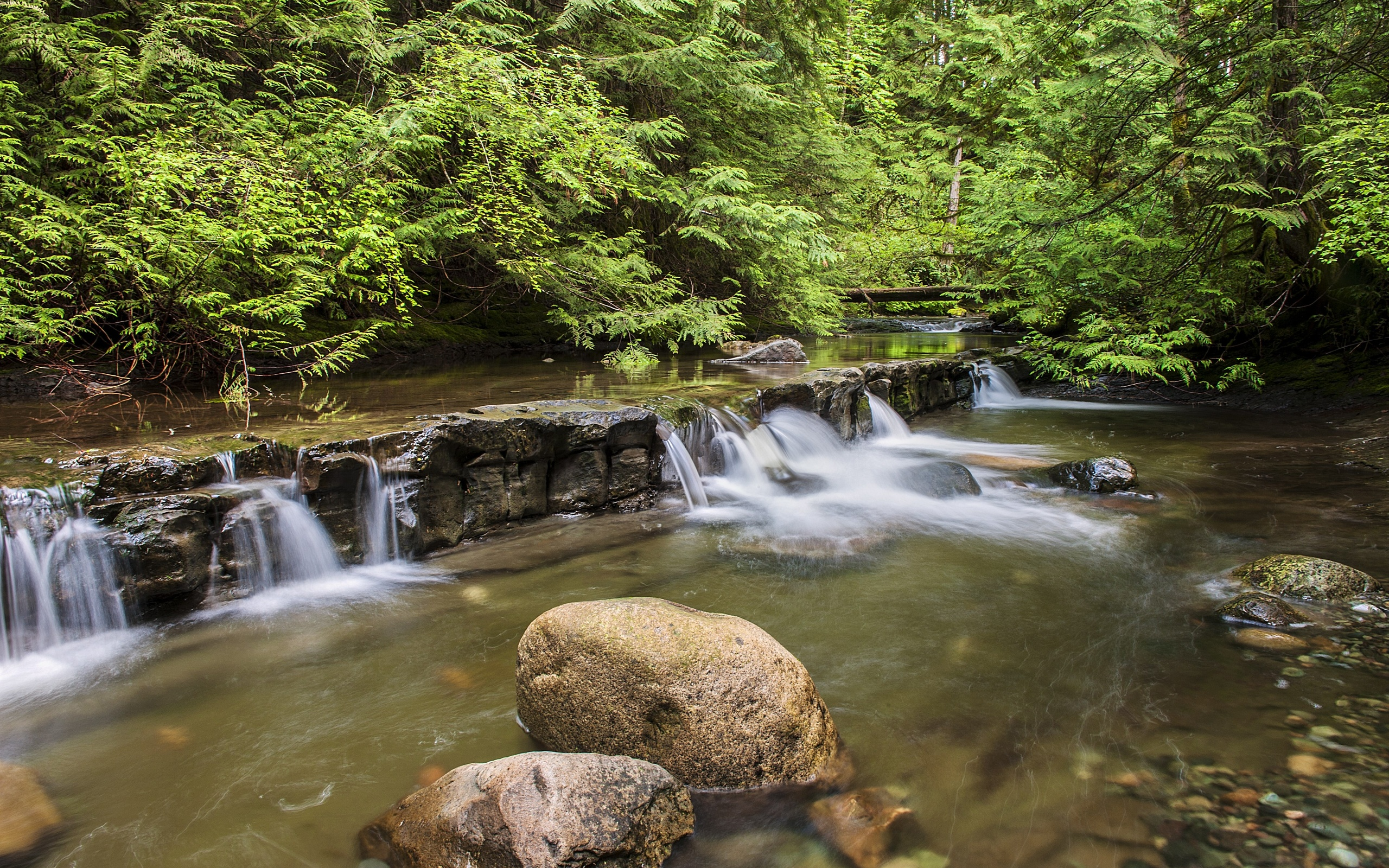 устойчивого красивые фото водопадов на рабочий стол опровергла