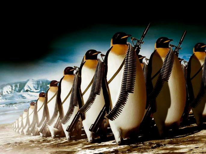 Пингвины. Penguin (55 обоев)