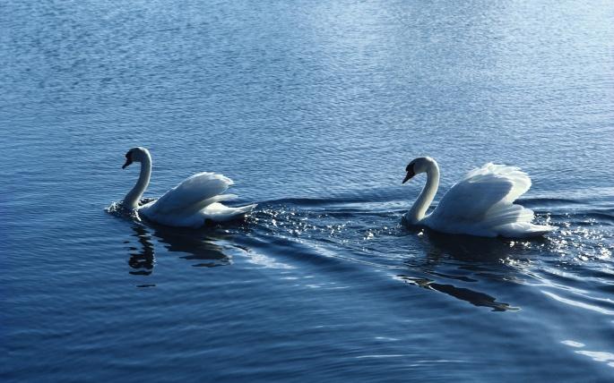 Красивые виды на воду. Часть 6 (47 обоев)