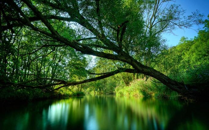 3д природа. 3d Nature (209 обоев)