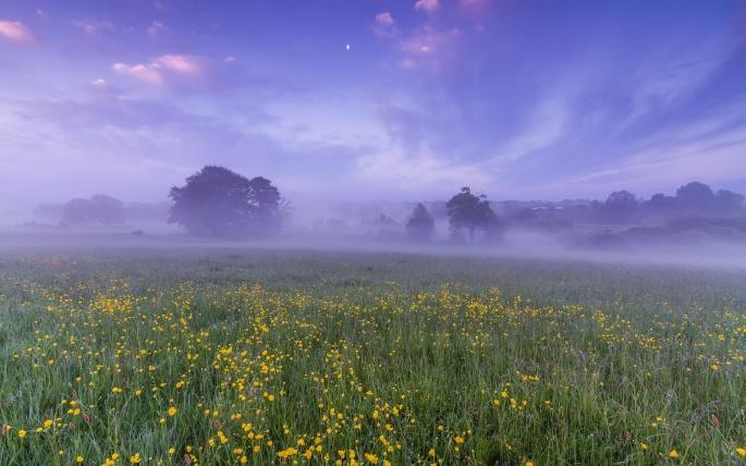 Туман. Fog (123 обоев)