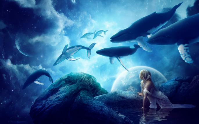 Фантастические киты. Whale (27 обоев)