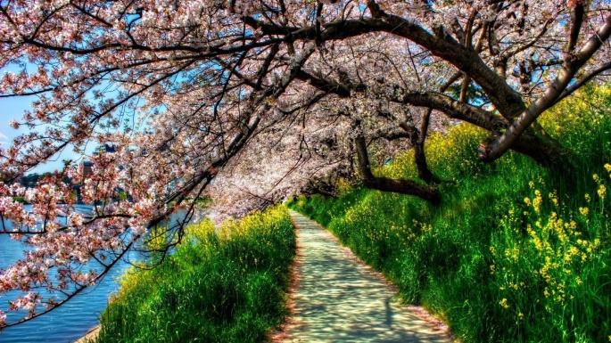 Весна. Spring (116 обоев)