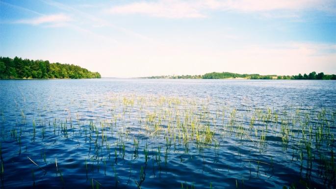 Вода. Water (100 обоев)