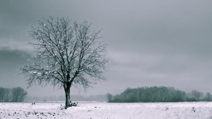 Зима. Winter (214 обоев)