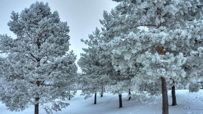 Зимние пейзажи. Winter landscapes (90 обоев)