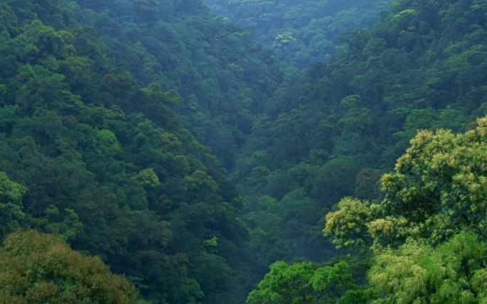 Красивая Япония. Beautiful Japan (505 обоев)