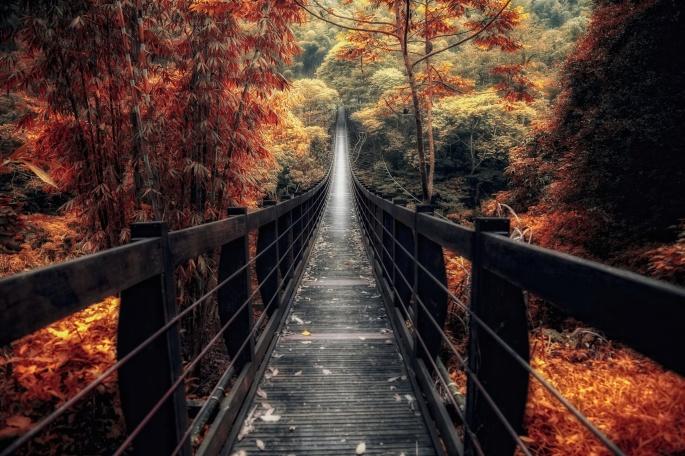 Мостики и тропинки. Bridges and footpaths (37 обоев)